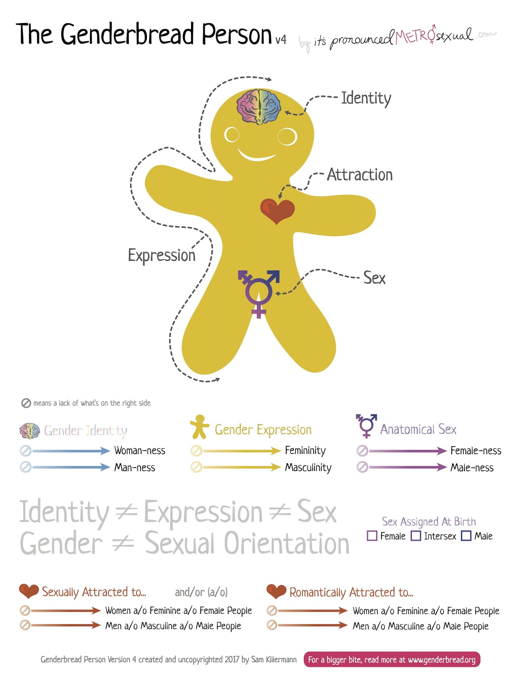 The Genderbread Person