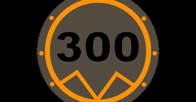 C-300
