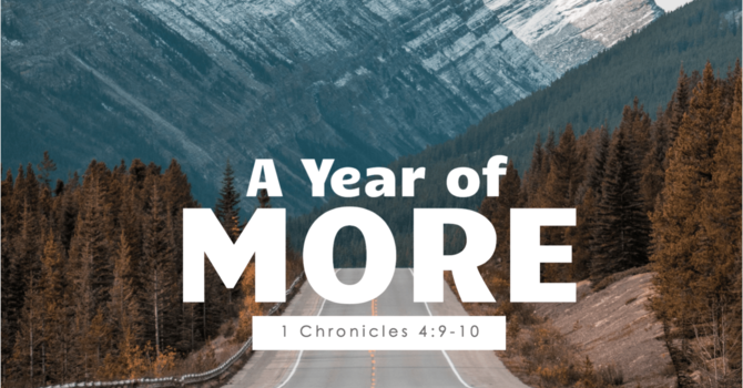 A Year of More