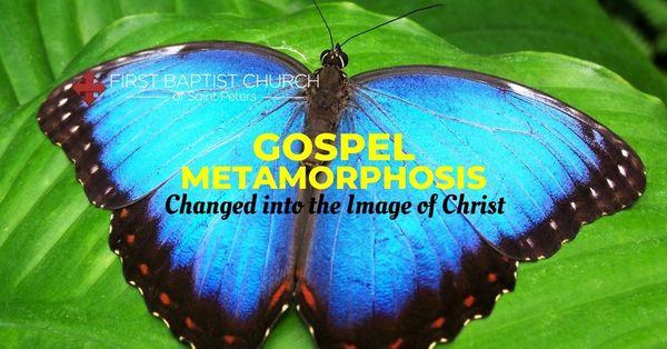 Gospel Metamorphosis: Changed into the Image of Christ