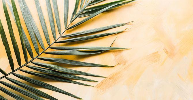 Palm Sunday Worship (8:30am spoken service)