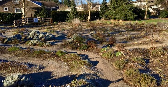 Mill Lake Labyrinth image