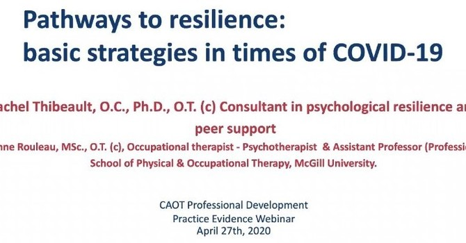 Covid-19 Support: Pathways to Resilience: Strategies for a World in Upheaval image