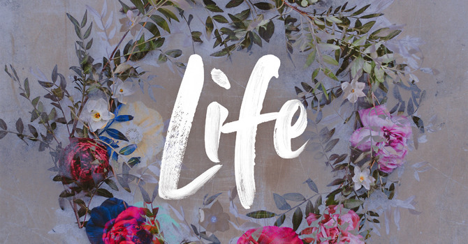 """Love Life"" with Edith Hall image"