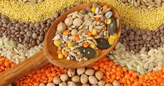 Lentils%20rice%20beans