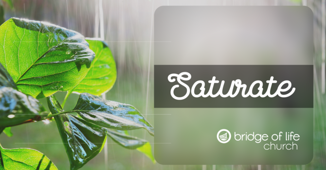 Saturate: Promised Power
