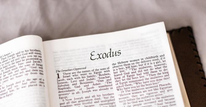 Exodus, Part 14