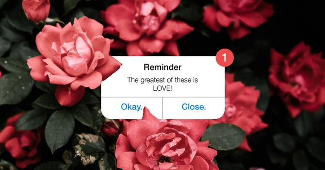 Happy Valentine's Day! image