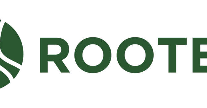 Rooted: The Creek Experience!