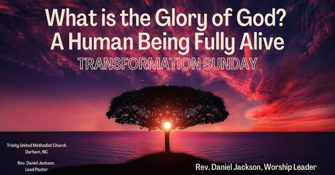 What is the Glory of God? A Human Being Fully Alive