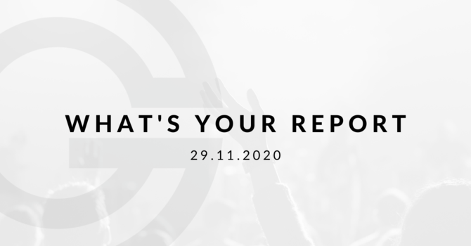 What's Your Report