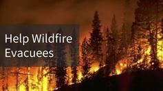 Firesnews