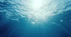 Baptism web1.jpg