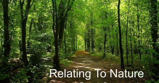 Relating To Nature