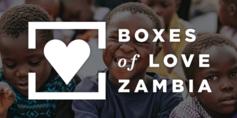 Bol zambia