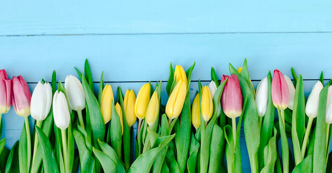 Easter Flower Order/Donation image