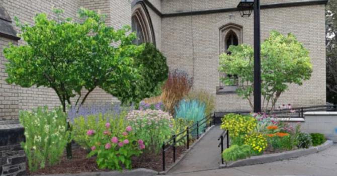 Front Gardens Update image