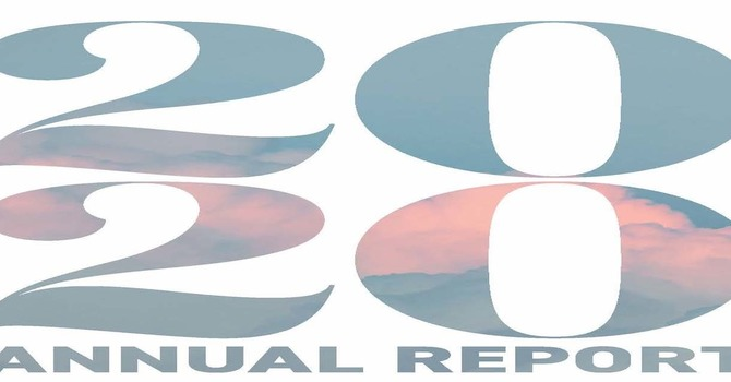 Annual Report for 2020 image