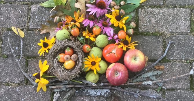 Why we celebrate the Season of Creation?