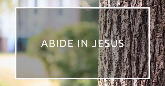Abide In Jesus
