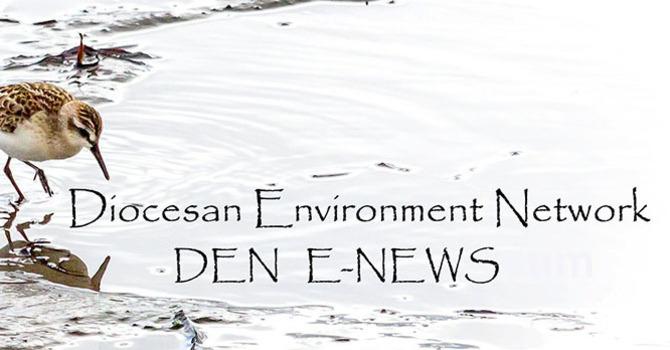 DEN Weekly Enews image