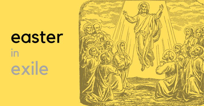 Origins, Blessing, and Purpose in Jesus