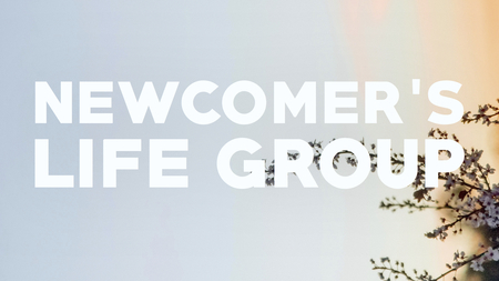 Newcomers Life Groups