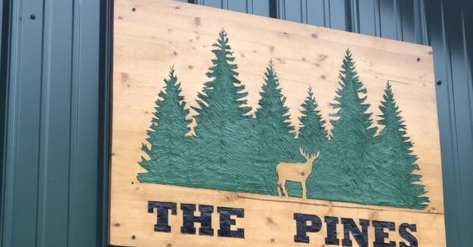 Pines Camping
