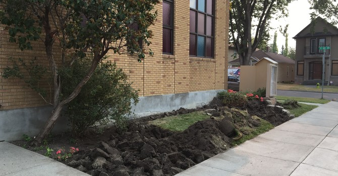 Beautification Project image