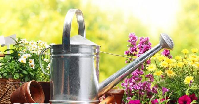 Easter Flower Garden image