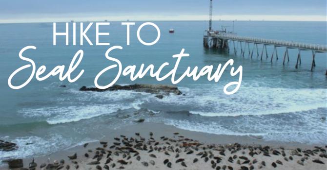 Hike Seal Sanctuary image