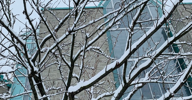Snowy Saint John's image