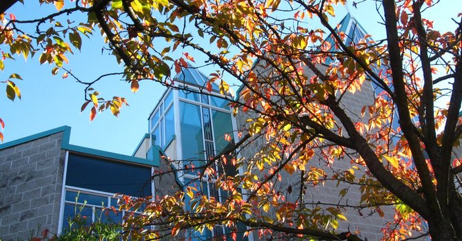 Autumn Around Saint John's image
