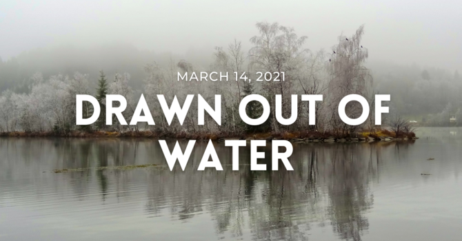 Drawn Out of Water
