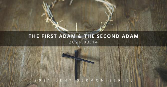 2 Understanding Jesus: 1st & 2nd Adam