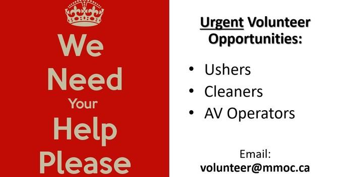 URGENT - We need volunteers image