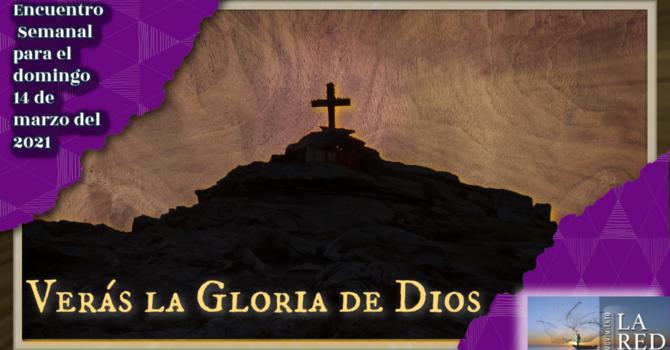 Verás la gloria de Dios