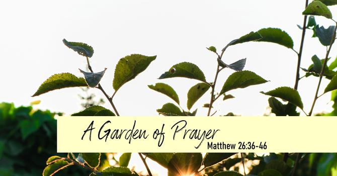 A Garden of Prayer