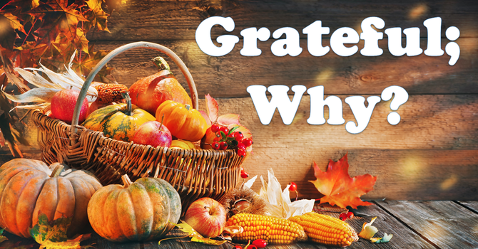 Grateful; Why?