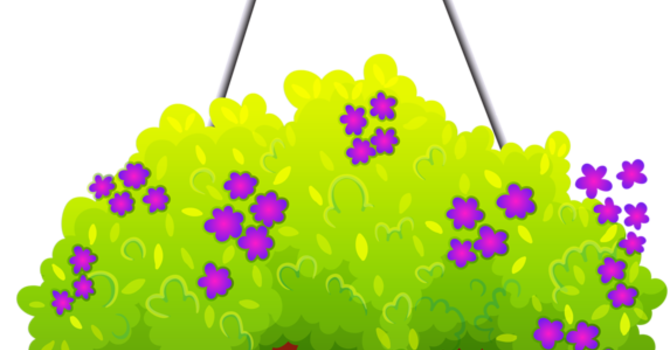 Preschool Flower Sale 2021 image