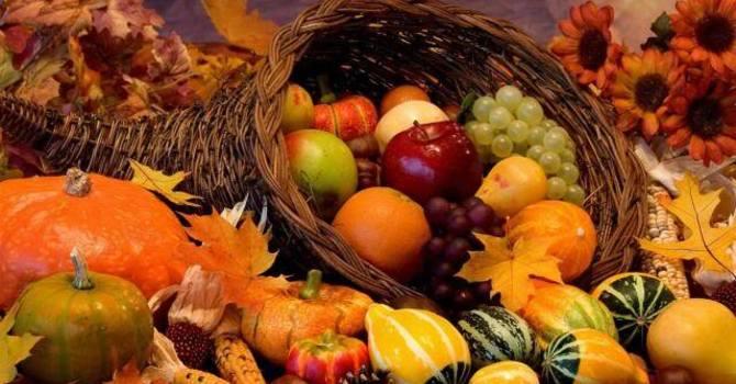 Thanksgiving Food Drive at St Matthias & St. Luke