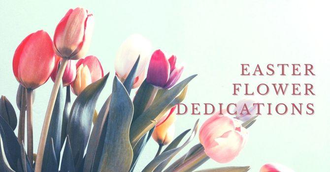 Easter Flowers Dedications 2021 image