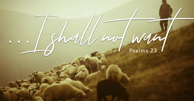 I Shall Not Want...The Lord is My Shepherd