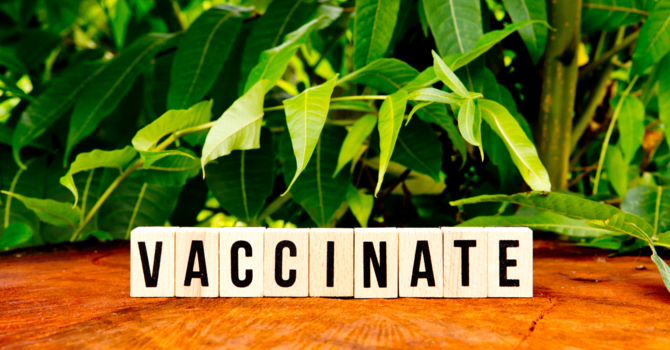 Ages 16+ Eligible for Vaccinations image