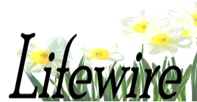April 2021 Lifewire image