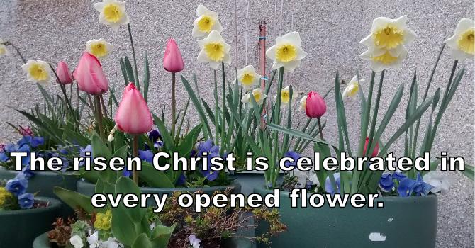 April 4, 2021  Easter Sunday Service image