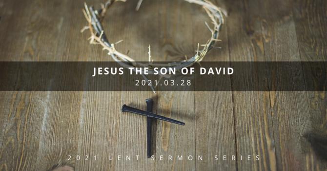 4 Understanding Jesus: The Son of David