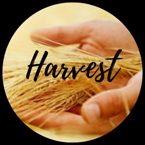 Harvest Christian Center