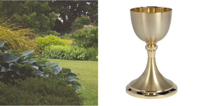 Garden Eucharist - All Welcome