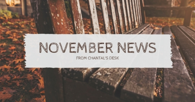 NOVEMBER NEWSLETTER image